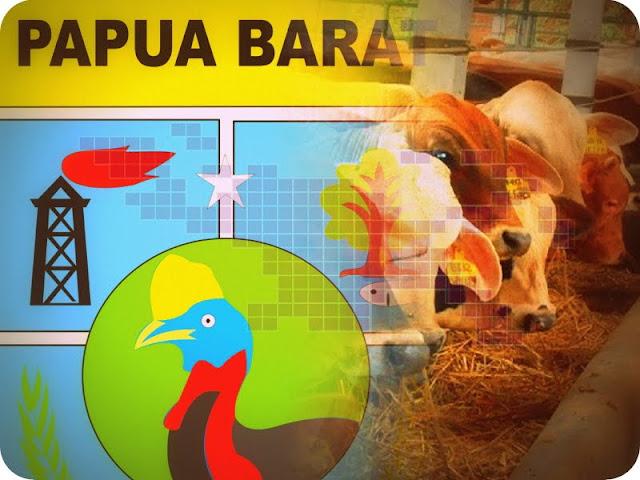 Produksi Daging Sapi di Papua Barat Alami Surplus