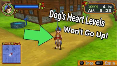 Fastest Ways to Raise Dog's Friendship Level - Harvest Moon: Hero of leaf Valley