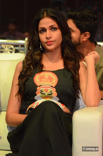 Lavanya-Tripathi-Photos-at-Kalamandir-6th-Anniversary-Celebrations