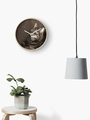 clock with cat photo on face an pot plant