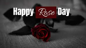rose day to my wife