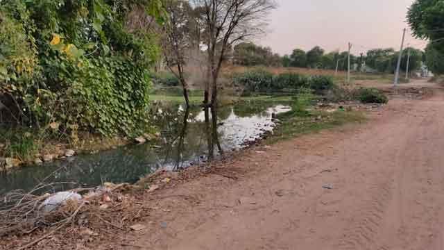 क्या आपने श्रीमाधोपुर के इस तालाब की सैर की है?