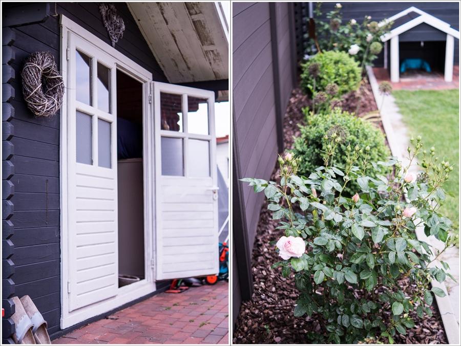 Blog + Fotografie by it's me | fim.works | Ein Garten im Norden | Collage vom Gartenhaus und Rosenrabatte mit Allium