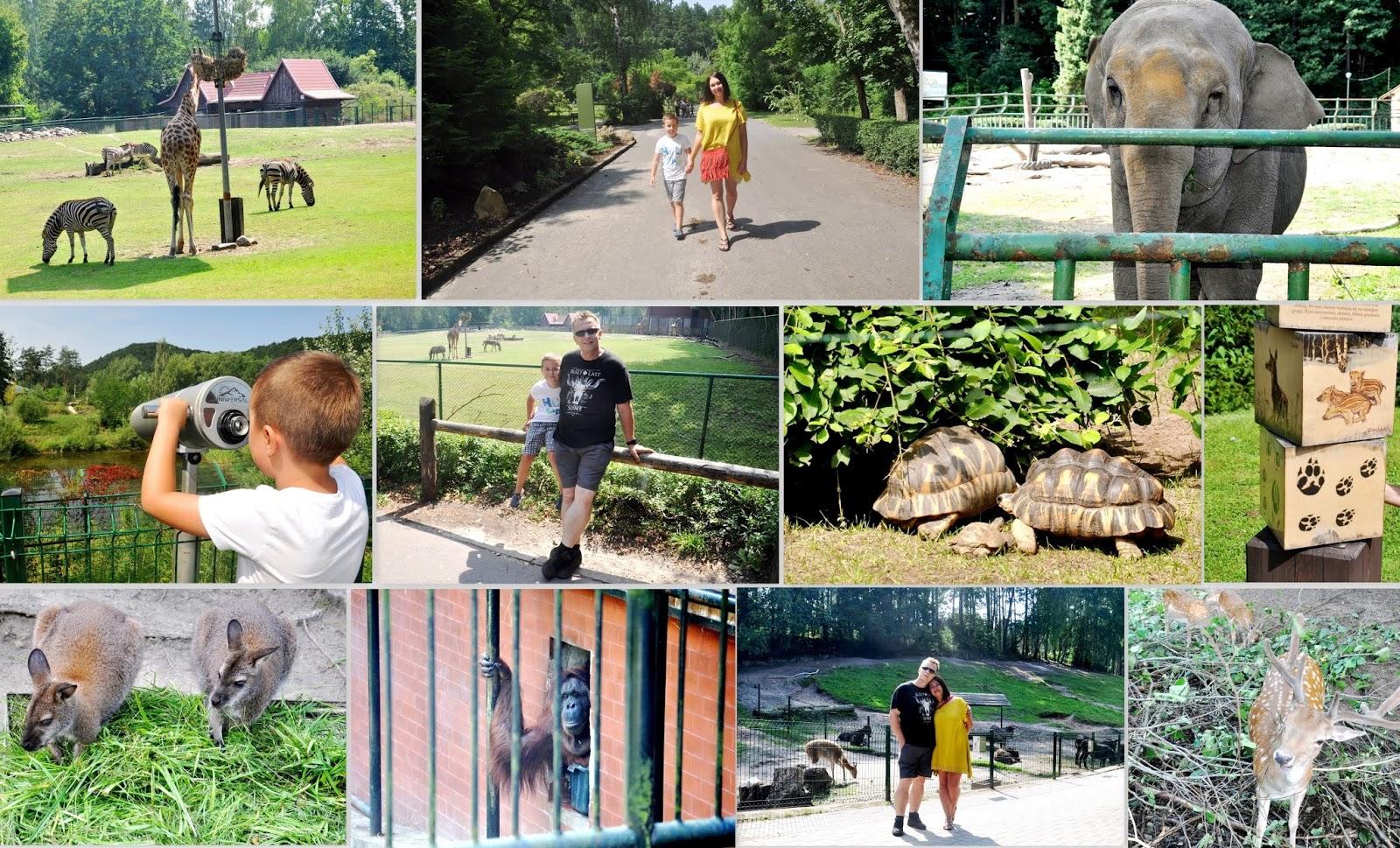Pomysł na wycieczkę - Gdański Ogród Zoologiczny