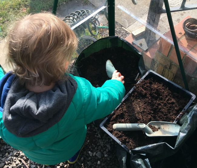 How-to-Sow-Seeds-for-Absolute-Beginners-image-of-toddler-filling-seed-tray-with-compost