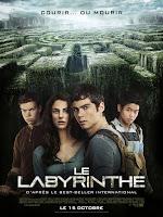 http://ilaose.blogspot.com/2015/12/le-labyrinthe-le-labyrinthe-terre-brulee.html