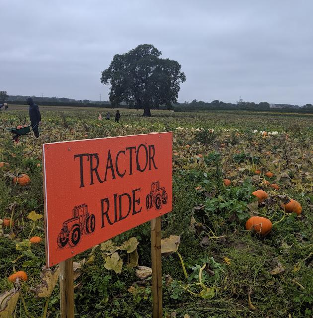 Tractor rides at Spilmans Farm