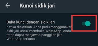 Cara agar akun whatsapp aman