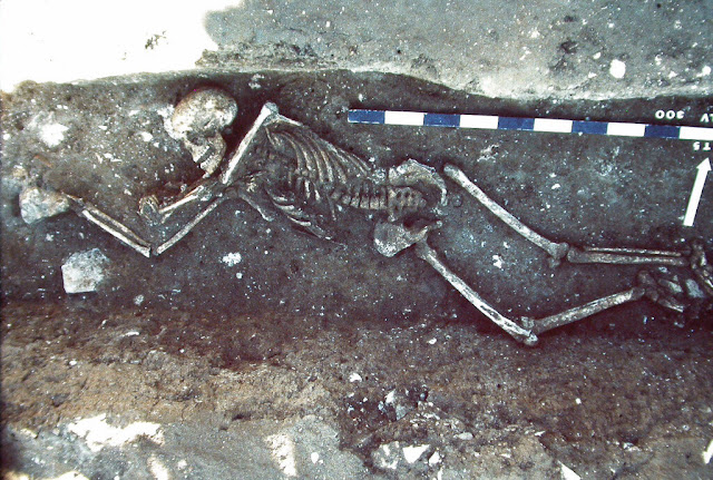 Plague genomes show extent, diversity of massive Roman-era pandemic