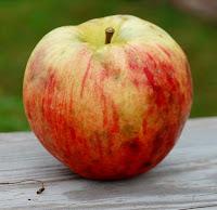 Round yellow apple with partial streaky orange blush.