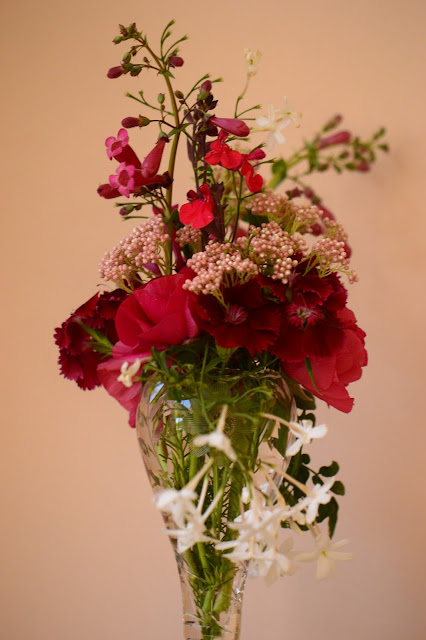 monday vase, ranunculus, cutflower, jasmine, dianthus, penstemon, small sunny garden, desert garden, amy myers