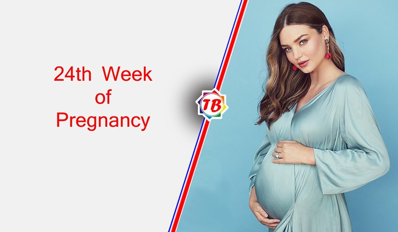 24th week of pregnancy