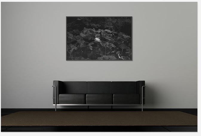 Decor with black and white picture