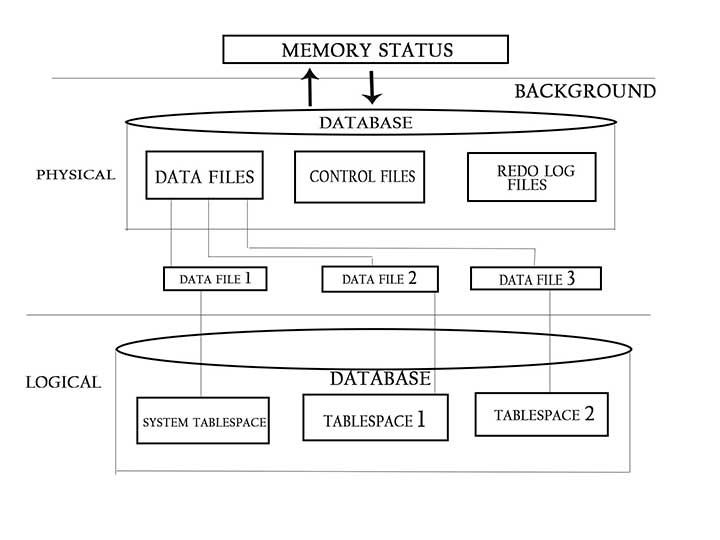 DATABASE,database,what is database,data,data mining,what is sql,what is data,database definition,data definition, big data,data analytics,relational database,database administrator,data mining,db,