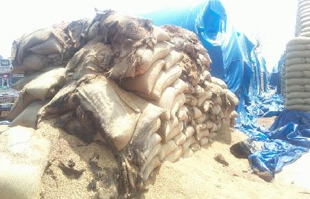 सरकार के घटिया चावल के कारण फैल रहा है कुपोषण