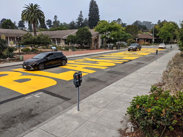 Black Lives Matter, Santa Cruz city hall