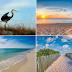 Orange Beach AL Real Estate Sales & Vacation Rentals