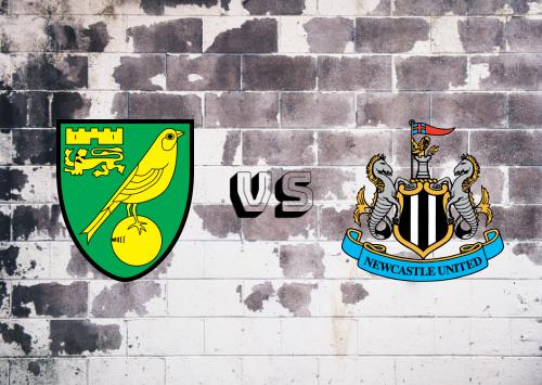 Norwich City vs Newcastle United  Resumen