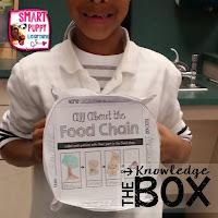 https://www.teacherspayteachers.com/Product/Food-Chain-Knowledge-Box-2454236