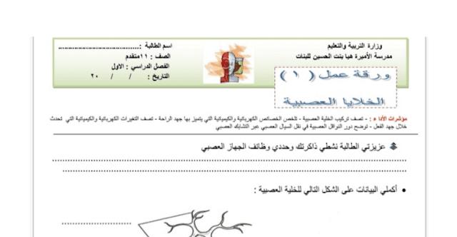 أوراق عمل الجهاز العصبي في الاحياء للصف العاشر العام الفصل الثالث