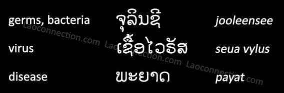 Lao Language:  Medical Infection Words - written in Lao and English
