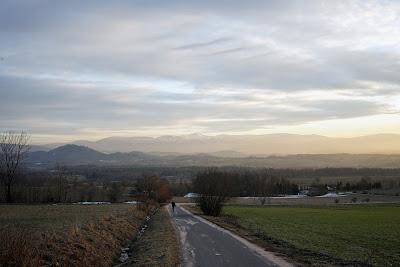 Droga lokalna między Komarnem a Radomierzem