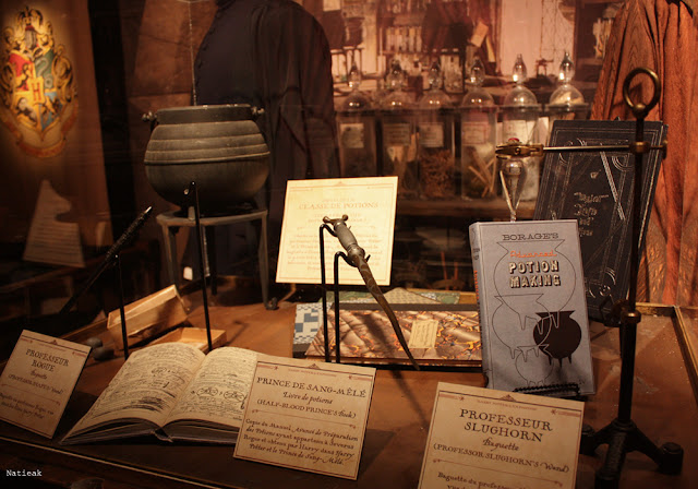 Affaire de Rogue exposition Harry Potter