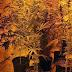 Σέρρες: Η ντουλάπα οδηγούσε σε υπόγειο φυτώριο κάνναβης