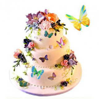 https://www.newxshop.com/edible-butterflies-large-rainbow-variety-set-of-20-butterfly-cake-decoration-butterfly-decoration-jams.html