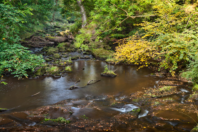 The Eller Beck River near Beck Hole in North Yorkshire by Martyn Ferry Photography