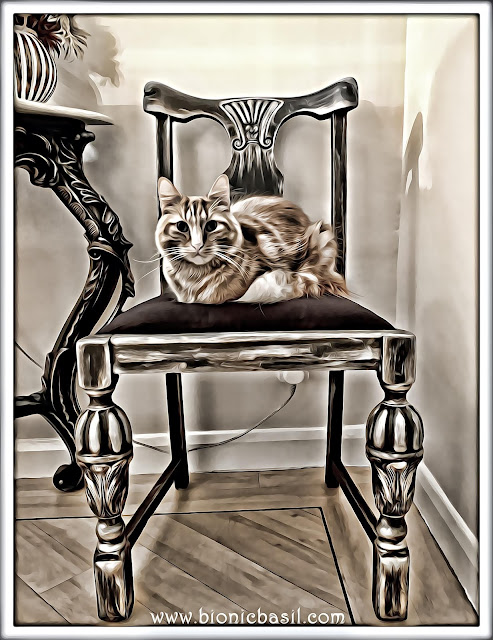 Fudge's Really Regal Selfie ©BionicBasil® Caturday Art