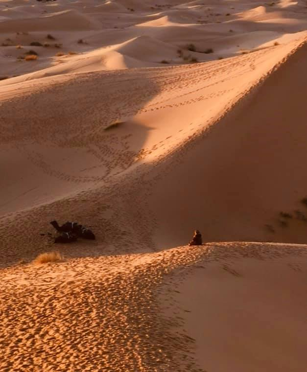 Ming的觀光凝視行旅地圖: Much Mor MOROCCO之Ⅰ 【沙漠】