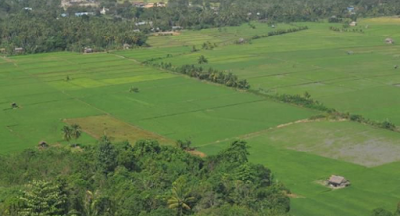 Kebijakan dan Pelaksanaan Land Reform di Era Kepemimpinan Jokowi-JK