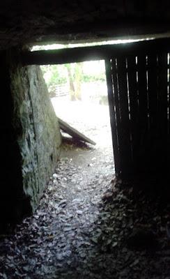 Fotóillusztráció meséhez, kilátás egy barlang bejáratából a napfényes nyári erdőre, a barlang szájánál elszáradt falevelek és fából készült ajtó.