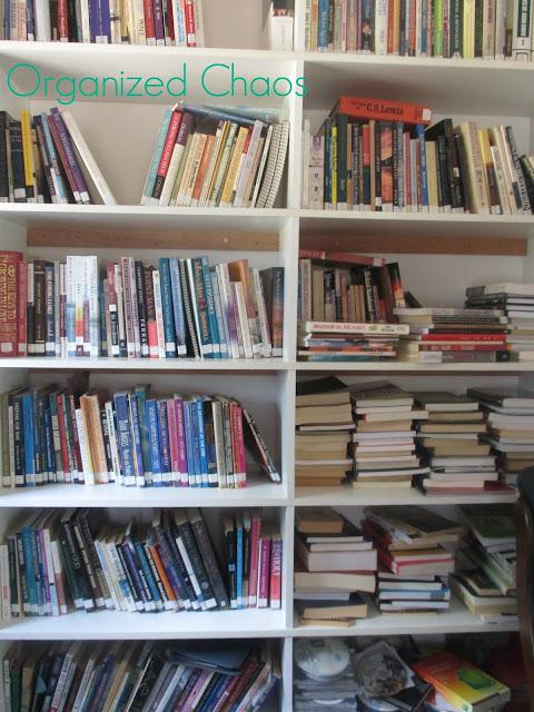 bookshelves many books