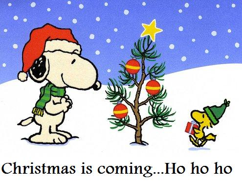 Image result for christmas is soon