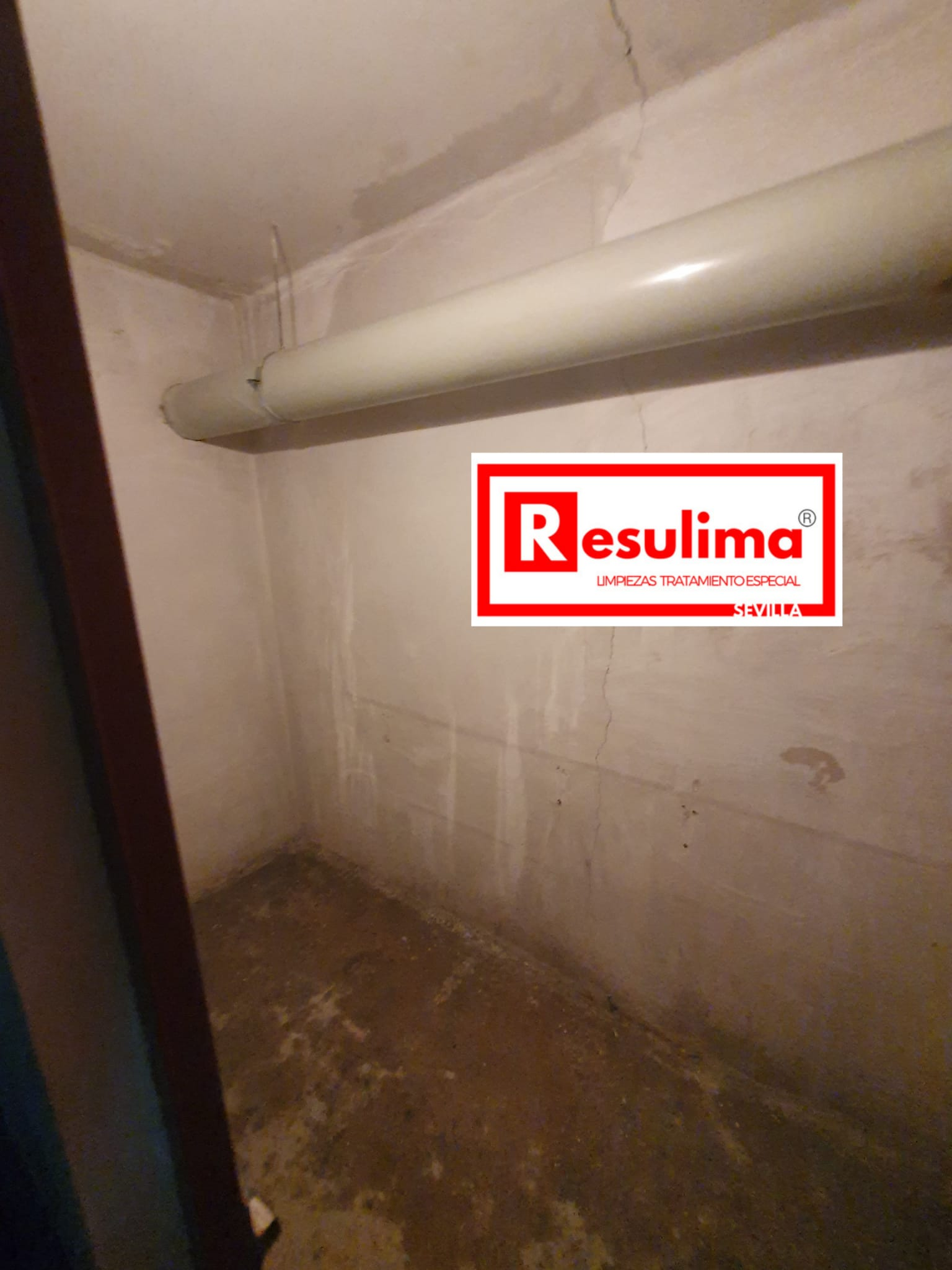 vaciado limpieza desinfección trasteros Sevilla