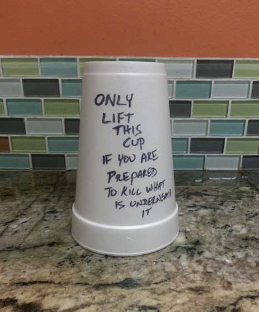 Only lift this cup if you are prepared to kill what is underneath it