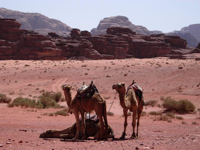 Roteiros pelo Oriente Médio