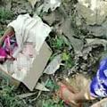 Warga Jember Temukan Sosok Bayi Laki-laki Saat Mencari Kayu Bakar