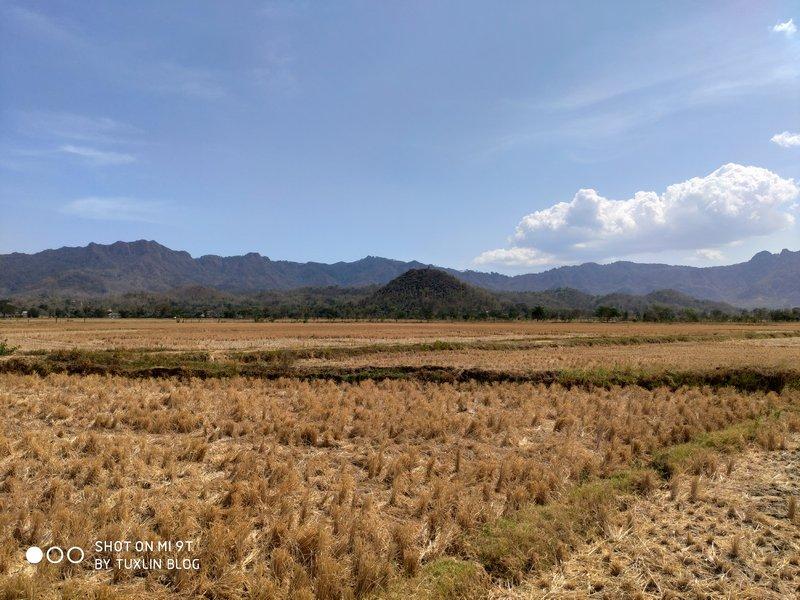 Hasil Foto Kamera Xiaomi Mi 9T
