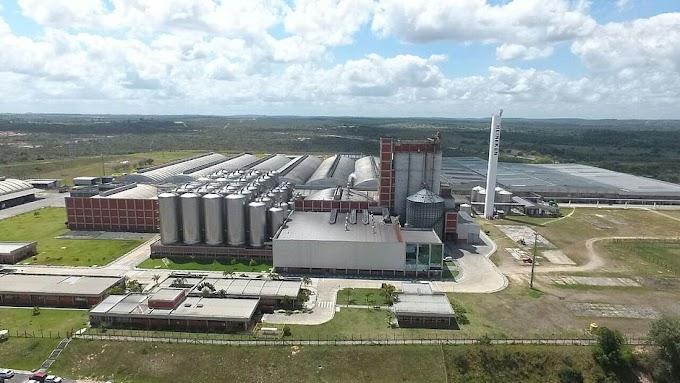 Fábrica da Heineken na Bahia corre risco de ser fechada