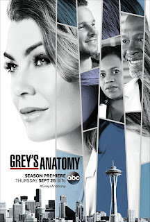 Anatomia de Grey Temporada 14 audio Español