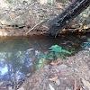 Sumedang Krisis Air Bersih  Warga Cinanggerang Konsumsi Air Kubangan