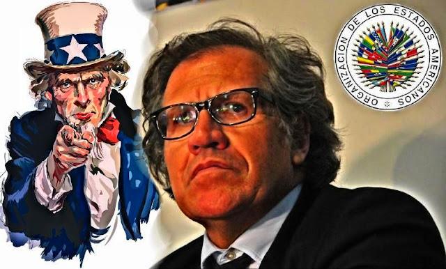 Resultado de imagen de LUÍS ALMAGRO, LA VERGÜENZA DE LA O.E.A.