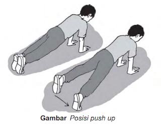 push up merupakan jenis latihan untuk melatih otot dada lengan