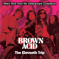 Brown Acid: The Eleventh Trip