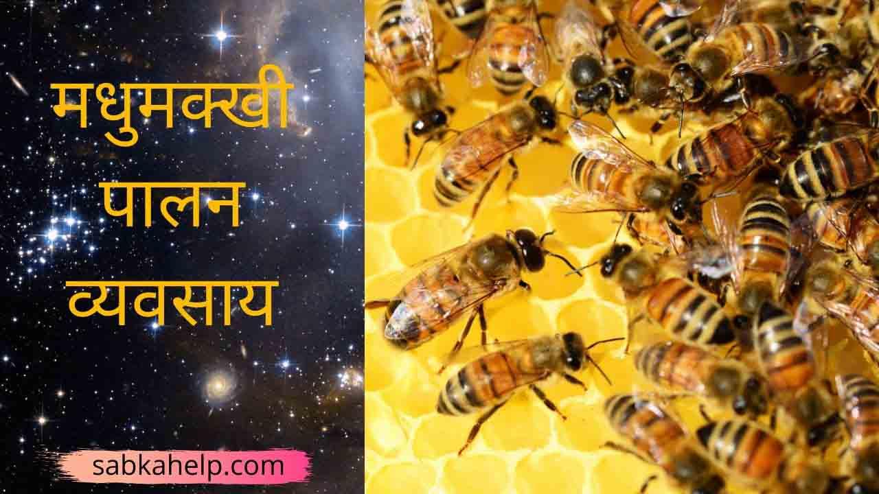 Honey Bee Farming in Hindi 2020 | मधुमक्खी पालन व्यवसाय कैसे शुरू करें ?