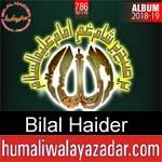 https://www.humaliwalyazadar.com/2018/10/bilal-haider-nohay-2019.html