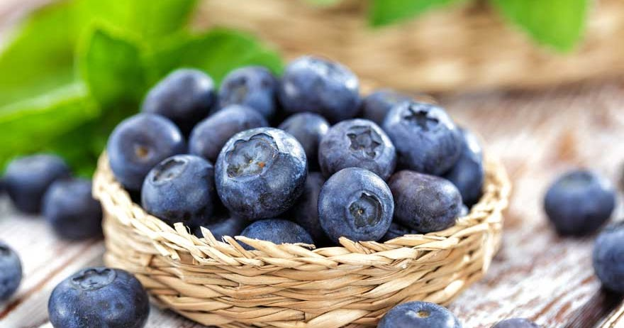 Blueberry Seed Oil - The Fragile Powerhouse